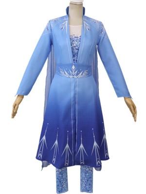 Frozen 2 Princess Elsa Adult Cosplay Costume