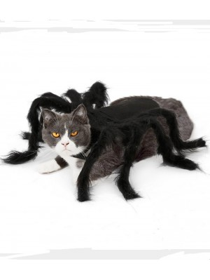 Halloween Spider Costume For Cat And Dog Pet Spider Clothes
